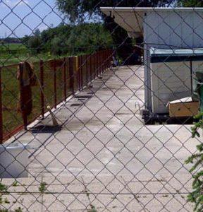 Tierschutz-fuer-Kroatien-2012-02
