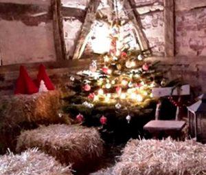 Frohe-Weihnachten-2015-02